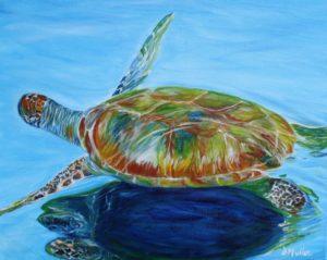 turtle, water, blue