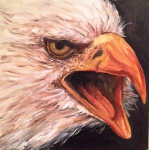Bald eagle, beck, artist Donna Muller, Tripps gallery