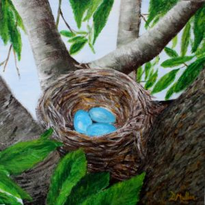 Paintings for sale, artist Donna Muller, robin nest, tree, eggs, blue robin eggs