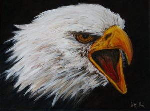 Eagle, bald eagle, painting, wildlife, Nova Scotia