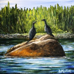 shag, Cormorant, Shad Bay, rock, rocks, trees, landscape